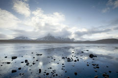 Ben Loyal's reflections Royalty Free Stock Photography