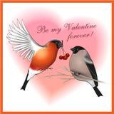 Ben mijn de groetenkaart van Valentine voor altijd Royalty-vrije Stock Fotografie