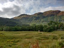Ben Nevis-Scotland Foto de Stock Royalty Free