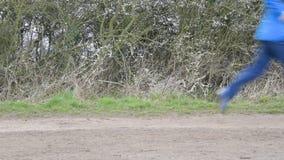 Ben och fot av löpare stock video
