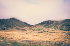 Ben Ohau Fields on a Cloudy Day in New Zealand with Vintage Colour Effects Royalty Free Stock Images