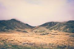 Ben Ohau Fields un giorno nuvoloso in Nuova Zelanda con gli effetti d'annata di colore immagini stock libere da diritti