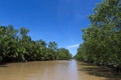 Ben Tre-Fluss 4 Stockfotos