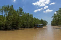 Ben Tre river 3 Royalty Free Stock Images