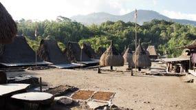 Bena un villaggio tradizionale con le capanne dell'erba della gente di Ngada in Flores Fotografia Stock Libera da Diritti