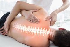 Benadrukte beenderen van de mens bij fysiotherapie