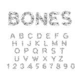 Benar ur alfabet Märker anatomi Skelett- stilsort Skalle och rygg royaltyfri illustrationer