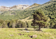 Benasque mountains Royalty Free Stock Images