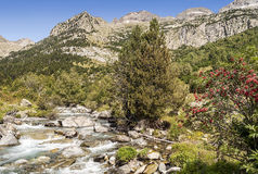 Benasque whitewater Royalty Free Stock Photography