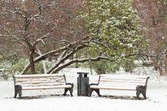 2 bences в парке зимы Стоковое Изображение