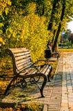 Bench в парке осени, красивом ландшафте падения Стоковое Изображение