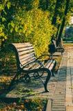 Bench в парке осени, красивом ландшафте падения Стоковое фото RF