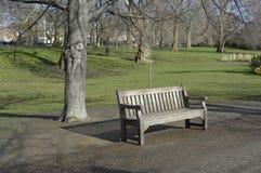 Bench в парке Стоковое Изображение RF