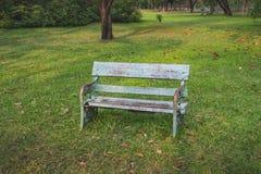 Bench в парке Стоковые Фотографии RF