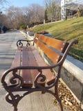 Bench в парке Стоковое Изображение