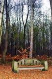 bench камень стоковое фото