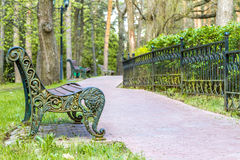 bench парк деревянный Стоковая Фотография