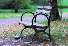 bench парк Стоковое Изображение RF