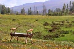 bench предыдущая старая весна деревянная Стоковое Фото
