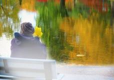 bench сидеть Стоковые Изображения