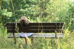 bench усаживание девушки Стоковое Изображение RF