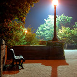 Bench. Night scene with bench, light and trees Royalty Free Stock Images