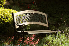 Bench. Ornate bench in the garden Stock Photography