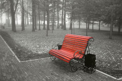 Bench. The bright brown bench in the foggy wood Stock Image