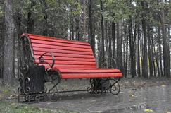 Bench. Wet bench in a park Royalty Free Stock Photos