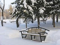 Bench. Bench for relaxation under the snow. Russia.  Tomsk Stock Image