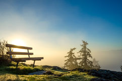 Bench above it all Royalty Free Stock Photo