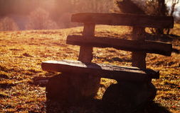 Bench. Alone on a meadow Stock Images