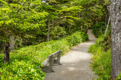 Free Bench Along A Nature Trail Stock Photography - 48198132
