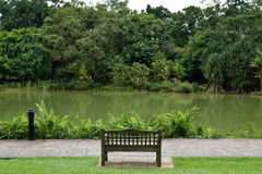 Bench along the lake. Bench at botanic garden Royalty Free Stock Image