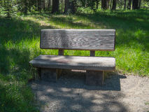 Bench along the trail Stock Images