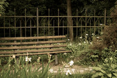 Bench and antique fence in the park Royalty Free Stock Image