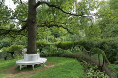 Bench around tree. The idea of the location of the plastic benches around a tree in the garden or in the park Stock Photography