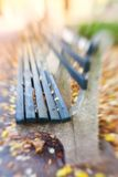 A bench in autumn Stock Photos