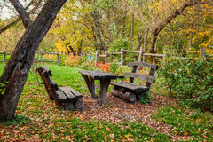 The bench in the autumn forest Stock Photography