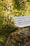 Bench in the Autumn garden. Bench in the autumn garden surrounded by a rain pool Stock Photo
