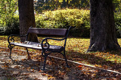 Bench autumn mood Stock Images