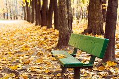 Bench in autumn park. Old green bench on footpath in autumn park Royalty Free Stock Images