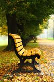 Bench in the autumn Stock Images