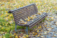 Bench in the autumn park Royalty Free Stock Photos