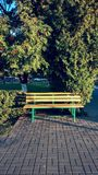 Bench in the autumn park in the city, summer day. Stock Photography