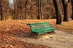 Bench in the autumn park Stock Image