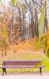 Bench in autumn  park. Horizontal photo, photo took in  Moscow, Russia Royalty Free Stock Photo