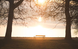Bench in the autumn park Stock Photography