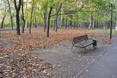 Bench in the autumn Park. Royalty Free Stock Photos