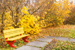 Bench in autumn  park. Photo took in the vicinities of Moscow, Russia Royalty Free Stock Photography